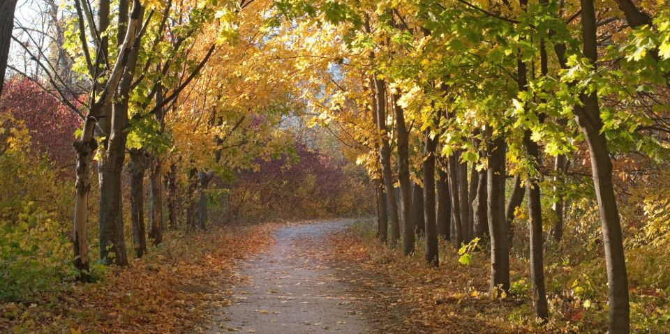 2-de-novembro-Pousada-La-Toscana-Campos-do-Jordao